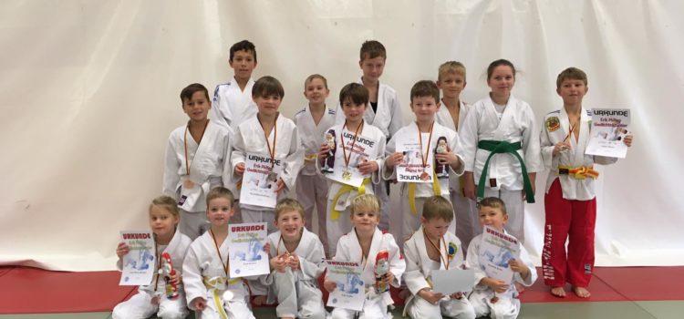 Hattinger Judokas räumen Medaillien ab