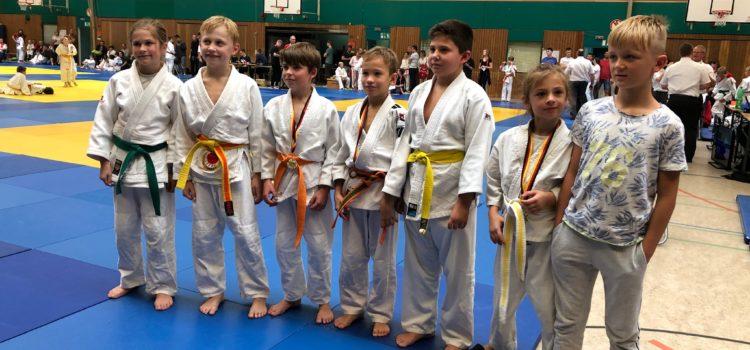 Erfolgreiche Bezirkseinzelmeisterschaften