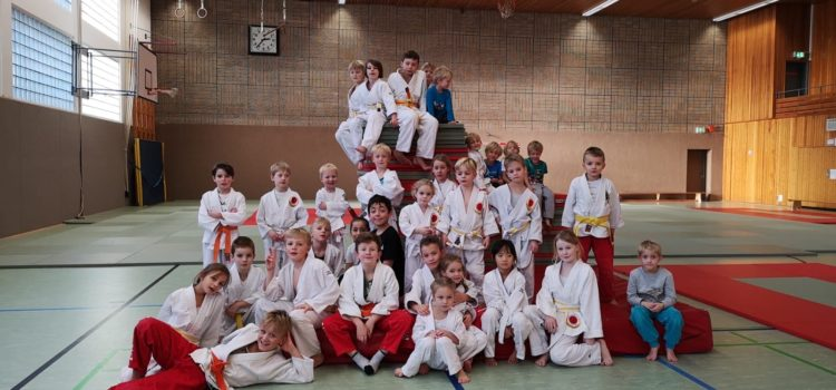 Judo Safari 2019